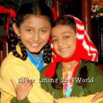 Silver Lining Zee World: Returns December, Plot, Summary, Full story